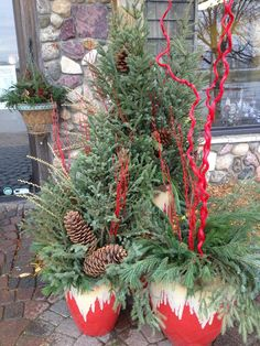 Our spruce tip in front of our store! Tis' the season! Spruce Tips, Christmas Ideas, Christmas Wreaths, Holiday Decorating, Tis The Season, Evergreen, Pots, Fall Winter, Outdoors