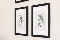 Olive Branch Botanical Prints - Gather and Flourish Pantry Labels, Pantry Storage, Pantry Organization, Farmhouse Style Decorating, Farmhouse Decor, Modern Farmhouse, Paper Airplane Party, How To Install Countertops, Bedding Inspiration
