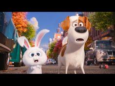 Тайная Жизнь Домашних Животных Мультфильмы для детей Игрушки из мультика The Secret Life of Pets - YouTube