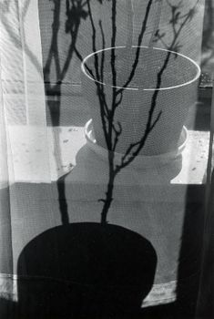 Andre Keresz, 1963, Screen and Pot Shadow
