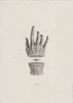 The Colombian artist Juan Osorno creates very minimal and clean surreal portraits using just a pencil. And the result is super stunning. Collage Design, Collage Art, Art Bizarre, Art Sketches, Art Drawings, Surrealism Drawing, Arte Do Hip Hop, Illustration Art, Illustrations