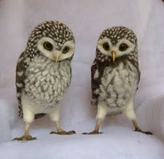 Amazing needle felted owls by Helen Priem.