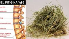 Get rid of lumbar hernia with completely natural products - - Pizza Ingredients, Brunch Party, Kefir, Health And Beauty, Herbalism, The Cure, Health Fitness, Food And Drink, Healthy