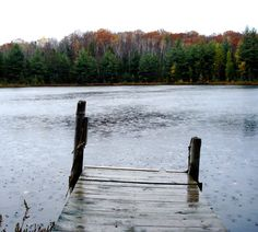 Three Lakes, WI Three Lakes, Puppy Love, Wisconsin, Things To Do, Places To Visit, Community, Puppies, Mountains, Vacation Rentals