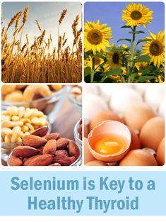 Optimize thyroid function | Make sure you're getting selenium! #thyroid