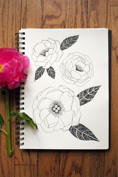 single bloom peonies - Wit and Whistle blog