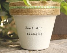 The Most Creative Spring Puns to Bring Mental Break and Relaxation to Your Life Potted Plants, Indoor Plants, Potted Garden, Garden Bed, Painted Pots, Terracotta Pots, Clay Pots, Plant Decor, Container Gardening