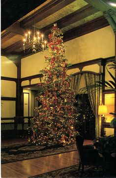 1983 the holidays recreating the first christmas which took place in the tree this year was decorated with live orchids - Christmas Tree Inn