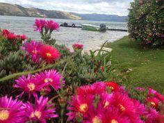 http://cabana-lago-de-tota.webnode.com.co/   El  Lago de Tota es ese Lugar ideal para un total descanso, con hermosos paisajes rodeado de pueblos típicos, la famosa playa de arena blanca, la  practica deportes extremos y caminatas ecológicas. Ven y conoce esta maravilla natural!  Cabaña Buenavista los espera Aquitania, Lago de Tota los acoge.  WhatsApp 3112333478  http://cabana-lago-de-tota.webnode.com.co/