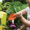Gardening Fun: The 5 Best Vegetables to Grow with Kids