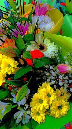 A 91 pieces jigsaw puzzle from Jigidi Wallpaper Nature Flowers, Beautiful Flowers Wallpapers, Beautiful Rose Flowers, Flower Phone Wallpaper, Beautiful Flower Arrangements, Butterfly Wallpaper, Exotic Flowers, Amazing Flowers, Pretty Flowers