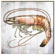 Shrimp Wood Art Panel | Large | Wall Decor | Art
