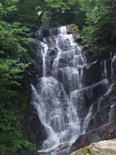 福岡県糸島市の白糸の滝へドライブ サンセットライブが開催される日でしたが道路は渋滞知らずで快適でした() 糸島といえばここに来ないとですね 夏の終わりにマイナスイオンをたっぷり浴びてきました() これからの紅葉のシーズンは雷山の千如寺の紅葉が綺麗なのであわせて行ってみてくださいね tags[福岡県]
