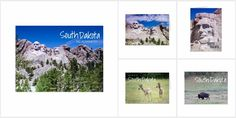 Take a road trip to South Dakota with photographs of the Black Hills and the Badlands. If you live, work, or play in South Dakota these greeting cards and postcards are perfect for your gift shop. Send to visitors and send to tour groups to remind them of Mt Rushmore, Custer State Park and wildlife of the state.