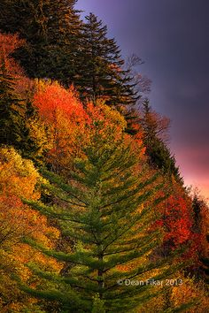 Mountain Morning Colors, Great Smoky Mountains National Park, TN