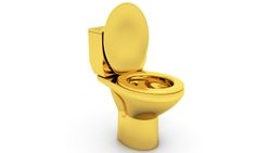 People could be flushing gold – and other precious metals – down the toilet. Save Environment, Precious Metals, Jewelry Art, Objects, Toilet, Treasure Hunting, Science, People, Rich Girl
