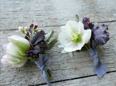 Not forgetting the boys. Natural Wedding Flowers, The Wild Bunch, Spring Blossom, Spring Wedding, Groomsmen, Lilac, Succulents, Boys, Plants