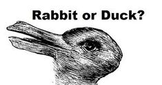 Image result for rabbit or duck optical illusion