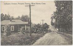 Arlington Avenue, Prospect Terrace, West Haven, Connecticut (CT) 1914 Postcard (ebay)
