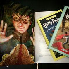 """Como no podía ser de otra forma hoy recomendamos los libros de Harry Potter.  Desde """"La piedra filosofal"""" con ilustraciones de #jimkay hasta """"Los cuentos de Beedle el Bardo""""."""