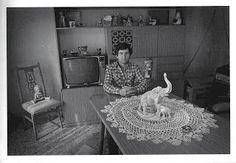 """El Peluchón Online - Busque su peluche conocido  Tomado de """"Gente en su Casa"""" de Andy Goldstein. Ed. La marca editora."""