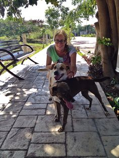 Rescued dogs are always happy to receive some love. Join us next time you are in Playa del Carmen or in the area to spend some time with them. Charm School is on every Saturday and Playa Animal Rescue offers transportation.