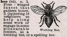 Bee Dictionary Definition via Knick of Time @ knickoftimeinteriors.blogspot.com