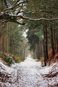 Waldweg mit wenig Schnee