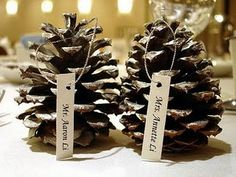 Standard Pinecone Crafts  Also has a fab fire lighter idea that works !