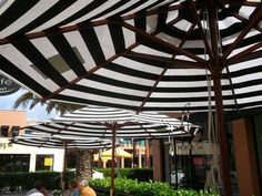 umbrellas are back up at Morrison Street Cafe - it must be summer! The umbrellas are back up at Morrison Street Cafe - it must be summer! , The umbrellas are back up at Morrison Street Cafe - it must be summer! Umbrellas, Pergola, Outdoor Structures, Street, Outdoor Decor, Summer, Home Decor, Ideas, Summer Time
