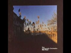 The Cinematic Orchestra - Child Song