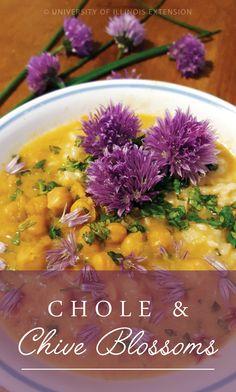 Fun, edible flowers recipe: Chole & Chive Blossoms #garden #Indian #cuisine