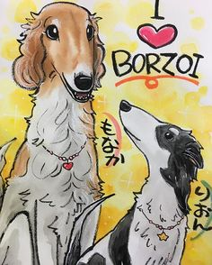もなかファミリー  似顔絵描いてもらいましたよ 可愛い(親バカ) #ボルゾイ #もなか #陸穏(リオン) #もなかのなかみ #自然 #グランド #犬だいすき #愛犬 #ボルゾイベビーズ