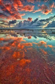 Long Reef Sydney Australia