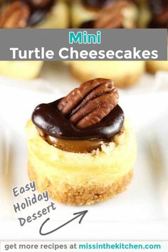 24 Servings 45 Minutes Mini Turtle Cheesecakes are the ultimate dessert for holidays and celebrations. Creamy vanilla cheesecake topped with caramel, pecans and chocolate. A tried and true favorite dessert recipe. Easy Holiday Desserts, Small Desserts, Bite Size Desserts, Party Desserts, Mini Desserts, Holiday Parties, Apple Desserts, Tropical Desserts, Christmas Desserts