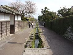 Water Canal for Old Samurai Residences Shimabara Peninsula (Unzen City, Shimabara City, Obama Town & Minami-Shimabara City) Flowers / Old buildings and streets