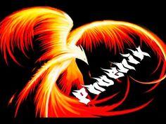 Azir Montage №4 -『Phoenix』 - YouTube