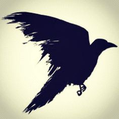 Like the feathers on this but not the shape...  The shadow self, or the dark side of the psyche. By acknowledging this dark side, we can communicate with both halves of ourselves. This offers liberating balance, and facilitates wisdom: