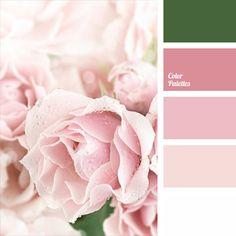 Color Palette #713