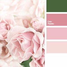 Harmonious blend of warm shades of pink with white underlined with quiet green. This color palette is well-suited for wedding decoration: fresh flowers in pink and white shades will match the solemnity of the moment, while the bride's classic bouquet will express the tenderness.