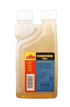 how to buy permethrin cream
