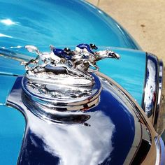 Detail on a 1950 Riley RMC. #morganadamsconcours #coolcars #hoodornament
