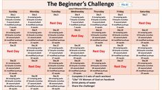 "The Beginner's Challenge  ^^^(click underlined title above for the pdf version)^^^  Don't wait until January to ""Get in Shape'! We still have the whole month of December to get moving! The Beginner..."