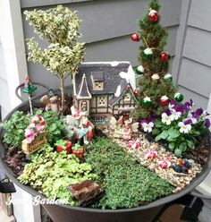My Christmas Fairy Garden 2017 Miniaturgarten My Christmas Fairy Garden Mini Fairy Garden, Fairy Garden Houses, Garden Show, Fairies Garden, Small Space Gardening, Garden Spaces, Onion Flower, Mediterranean Plants, Fragrant Roses