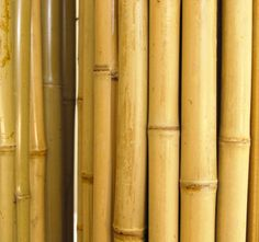 120 Best Bamboo Poles images in 2018 | Bamboo poles, Bamboo products