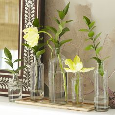 Found it at Wayfair - Canton 6-Piece Vase Set with Tray