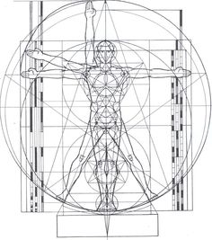 Sacred Geometry The Vitruvian Man cropped and erased measurements Divine Proportion, Sacred Architecture, Architecture Tattoo, Architecture Plan, Interior Design Elements, Spiritus, Concept Diagram, Golden Ratio, Pentacle