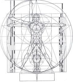 Man's divine proportions