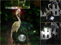 Solar Garden Lights is an importer and supplier of stylish solar powered lighting systems for South African Gardens. Solar Lights, Heron, Solar Power, Bird Feeders, Personality, Christmas Ornaments, Stylish, Holiday Decor, Garden
