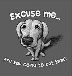 Dog T-shirt Unisex Cotton Blend S-M-L-XL-2XL NWT Excuse Me You Going to Eat That #Gildan #ShortSleeve